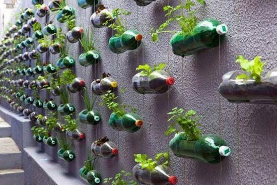 Sa reciclam! Azi: Bidoane