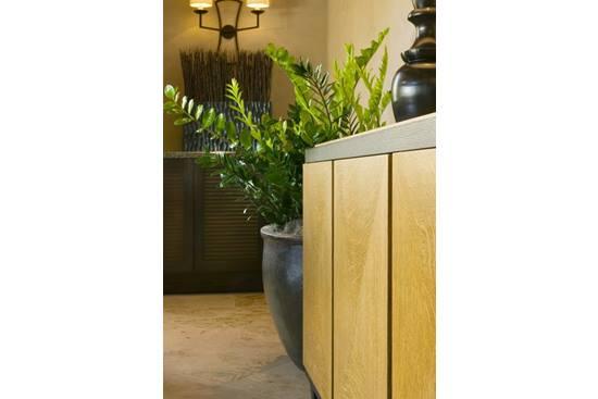 Plante de interior - Care este preferata ta?