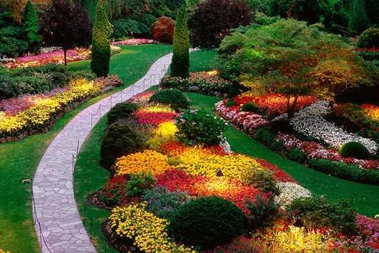 Idei pentru gradinaritul varatic