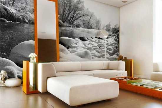 Despre picturile murale in interiorul locuintei