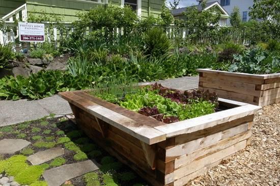 Idei pentru gradina ta din 2015