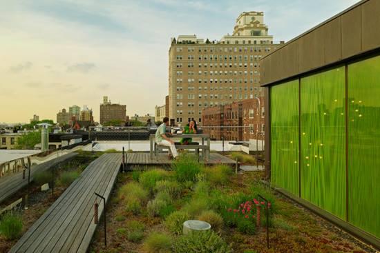 Sugestii pentru terase mai placute