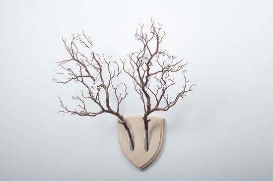 Elkebana - Trofee pentru adevaratii iubitori ai naturii