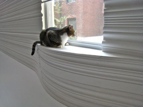 O pisica merita iubire si un spatiu amenajat astfel