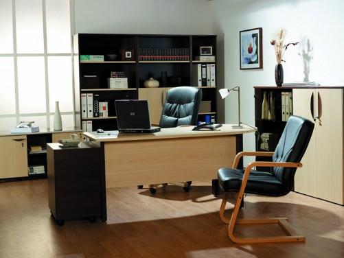 Cele mai bune idei pentru amenajarea biroului tau