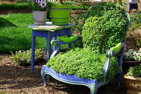 Util si placut: plantele in ghiveci