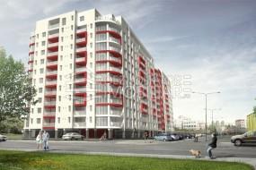 RED7 Arad